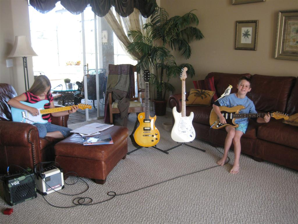 Our guitar Collection